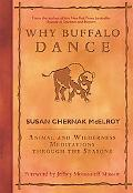 Why Buffalo Dance Animal And Wilderness Meditations Through the Seasons