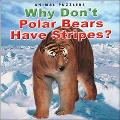 Why Don't Polar Bears Have Stripes?