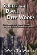 Spirits That Dwell in Deep Woods The Prayer and Praise Hymns of the Black Religious Experience