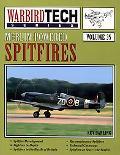 Merlin-Powered Spitfires