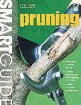 Smart Guide: Pruning