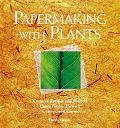 Papermaking With Plants
