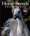 Horse Breeds Poster Book