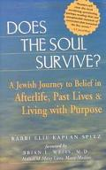 Does the Soul Survive? A Jewish Journey to Belief in Afterlife, Past Lives & Living With Pur...