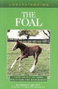 Understanding the Foal Your Guide to Horse Health Care and Management