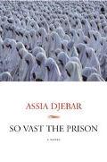 So Vast the Prison A Novel