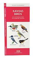 Kansas Birds An Introduction to Familiar Species