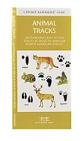 Animal Tracks An Introduction to the Tracks and Signs of Familiar North American Species