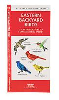 Eastern Backyard Birds An Introduction to Familiar Urban Species