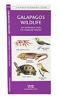 Galapagos Wildlife An Introduction to Familiar Species