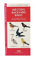 Western Backyard Birds An Introduction to Familiar Urban Species