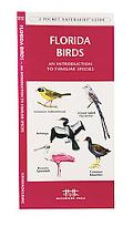 Florida Birds An Introduction to Familiar Species
