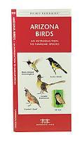 Arizona Birds An Introduction to Familiar Species