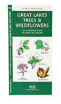 Great Lakes Trees & Wildflowers An Introduction to Familiar Species