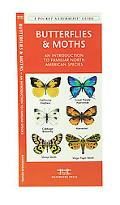 Butterflies & Moths An Introduction to Familiar North American Species