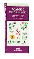 Roadside Wildflowers An Introduction to Familiar North American Species
