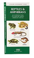 Reptiles and Amphibians An Introduction to Familiar North American Species