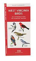 West Virginia Birds An Introduction to Familiar Species