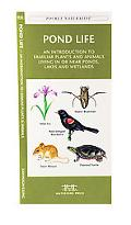 Pond Life An Introduction to Familiar Plants and Animals Living in or Near Ponds, Lakes and ...