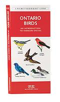 Ontario Birds An Introduction To Familiar Species