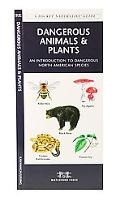Dangerous Animals And Plants An Introduction to Dangerous North American Species