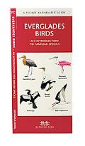 Everglades Birds An Introduction to Familiar Species