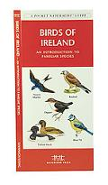 Birds of Ireland An Introduction to Familiar Species