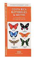 Costa Rica Butterflies & Moths An Introduction to Familiar Species