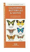 California Butterflies & Moths An Introduction to Familiar Species