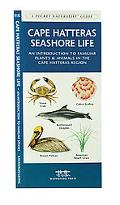 Cape Hatteras Seashore Life An Introduction to Familiar Plants and Animals in the Cape Hatte...