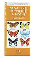 Great Lakes Butterflies & Moths An Introduction to Familiar Species