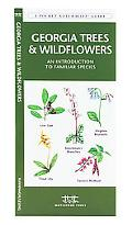 Georgia Trees and Wildflowers