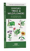 Kansas Trees & Wildflowers