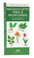 Massachusetts Trees & Wildflowers: An Introduction to Familiar Species
