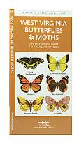 West Virginia Butterflies and Moths: An Introduction to 72 Familiar Species
