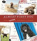 Almost First Dog: The Secret (Rejected) Portuguese Water Dog Applications