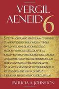 Aeneid 6 (The Focus Vergil Aeneid Commentaries)