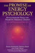 Promise of Energy Psychology Revolutionary Tools for Dramatic Personal Change