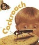 Cockroach (Bug Books)