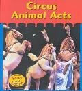Circus Animal Acts