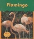 Flamingo (Zoo Animals (Heinemann Hardcover))