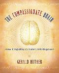 Compassionate Brain How Empathy Creates Intelligence