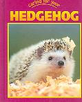 Caring For Your Hedgehog