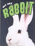 Rabbit: My Pet