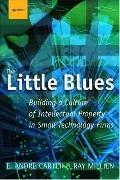 Little Blues Building A Culture Of Intellectual Property In Small Technology Firms