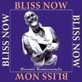 Bliss Now My Journey With Sri Anandamayi Ma