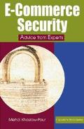 E-Commerce Security Advice from Experts