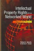Intellectual Property Rights in a Networked World Theory and Practice