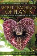 Secret Teachings Of Plants The Intelligence Of The Heart In The Direct Perception Of Nature