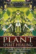 Plant Spirit Healing A Guide to Working With Plant Consciousness